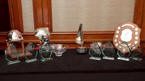 CHSG Selection of Awards